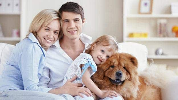 Wills & Trusts dog-young-family Direct Wills Arundel